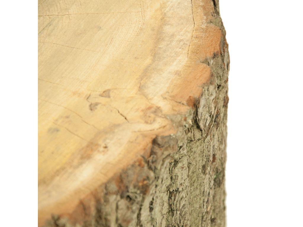 Boomstam tafel 60-70 cm hoog met schors